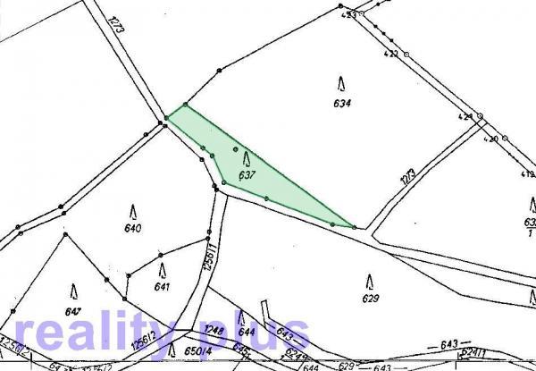Prodej lesního pozemku v k.ú. Dlouhý Most